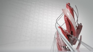 AutoCAD 2016 Splash Screen
